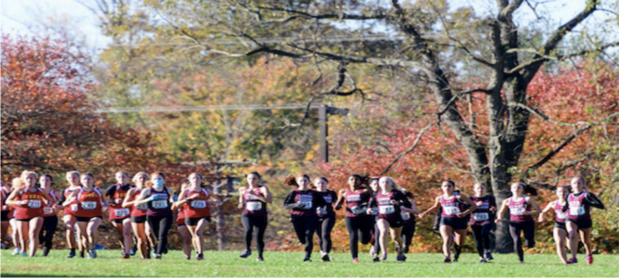 LMXC (middle) has run against tough competition, like Haverford (left) and Garnet Valley (right), this season. | Photo courtesy of Sarah Cooke '21
