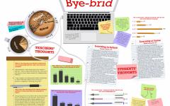 Bye-brid
