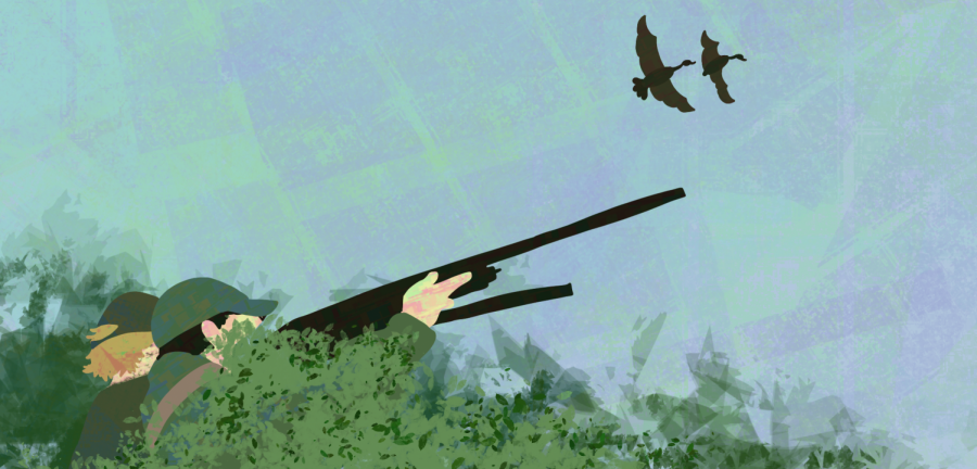 Hunting ducks | Graphic by