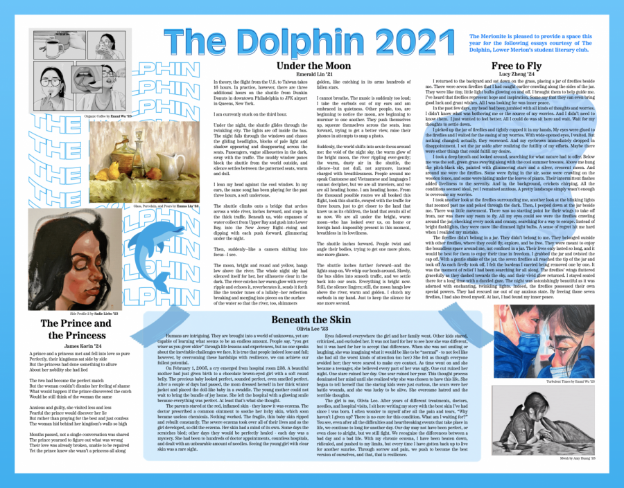 The Dolphin 2021
